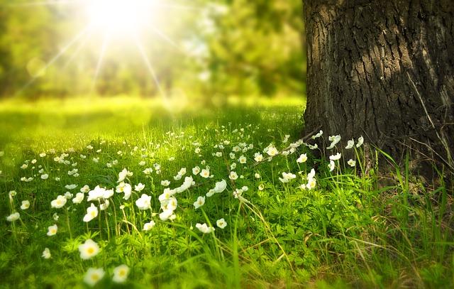 【コーチング研究26】潜在意識覚醒 10 お金・時間・精神的にも豊かな人生に向かえる方法
